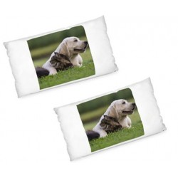 Lot de 2 grands coussins rectangle avec photos